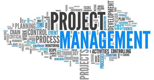 the management of a project